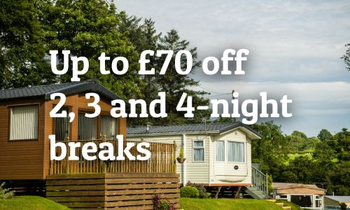 Check out Our Latest Special Offers